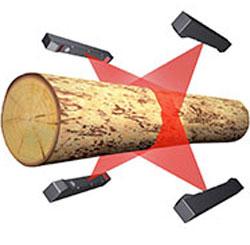 木材の切り出し